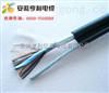 (信陽)(DJGGP2計算機電纜)(石油設備系統)
