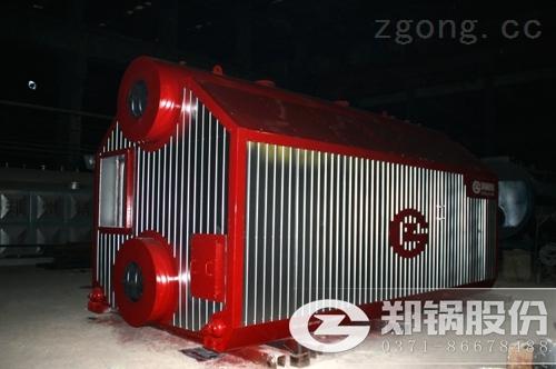 30吨生物质蒸汽锅炉价格多少钱