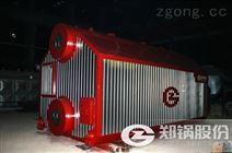 30噸生物質蒸汽鍋爐價格多少錢